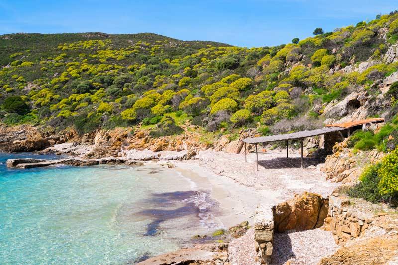 Isola Asinara