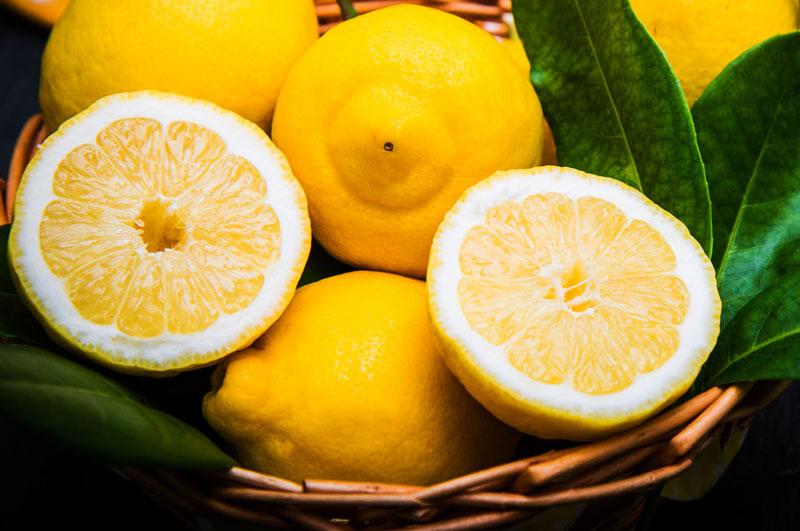 Limoni Femminello del Gargano