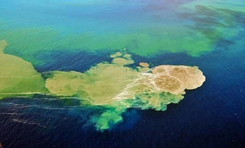 Isola Ferdinandea- Sicilia