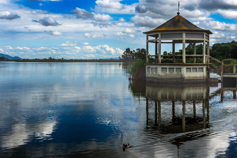 Lago di Massacciucoli